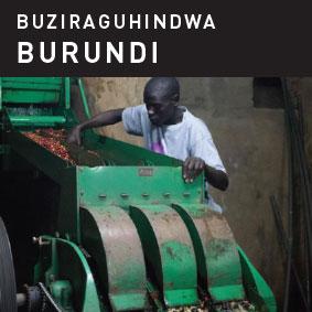 Burundi Buziraguhindwa Coffee