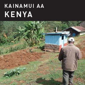 Kainamui AA Coffee