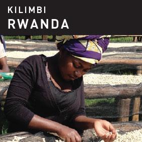 Kilimbi Rwanda Coffee