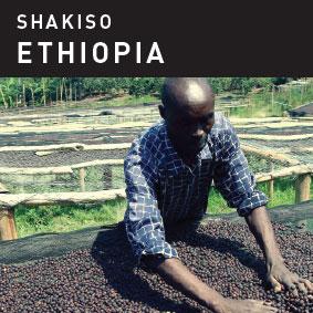 Shakiso Ethiopia.