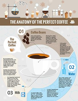 Coffeee Infographic.