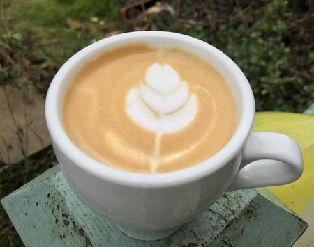 Espresso made with ROK, milk steamed via the Gaggia Classic.